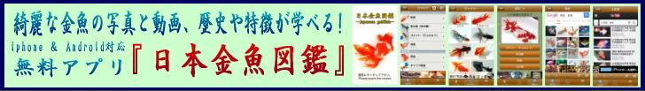 アプリ「日本金魚図鑑」